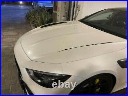 Mercedes GT 43,53,63 AMG X290 Carbon Fiber Hood TOPCAR BRAND NEW